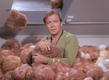 "William Shatner helping the Stamas Bros clear their national ""Bros"" headquarters of Tribbles"